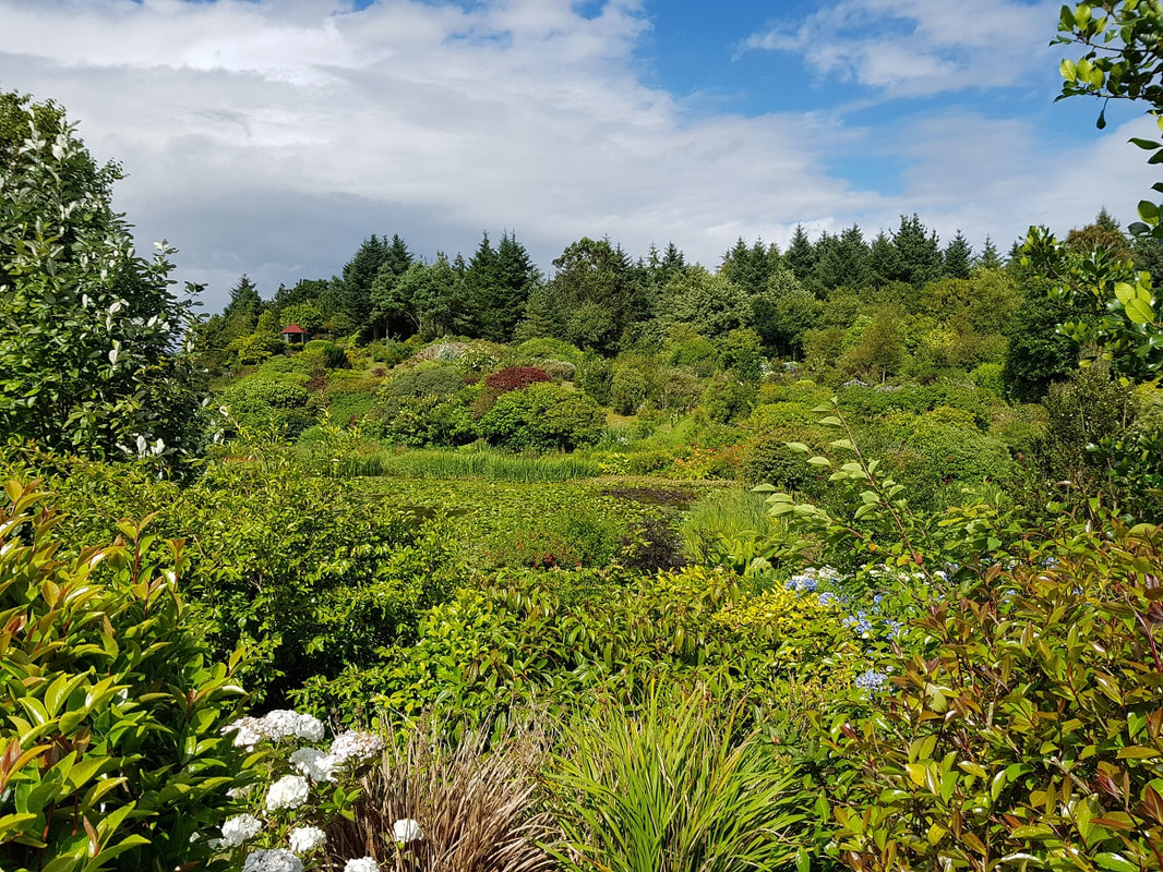 Glenwhan Gardens, Dumfries and Galloway