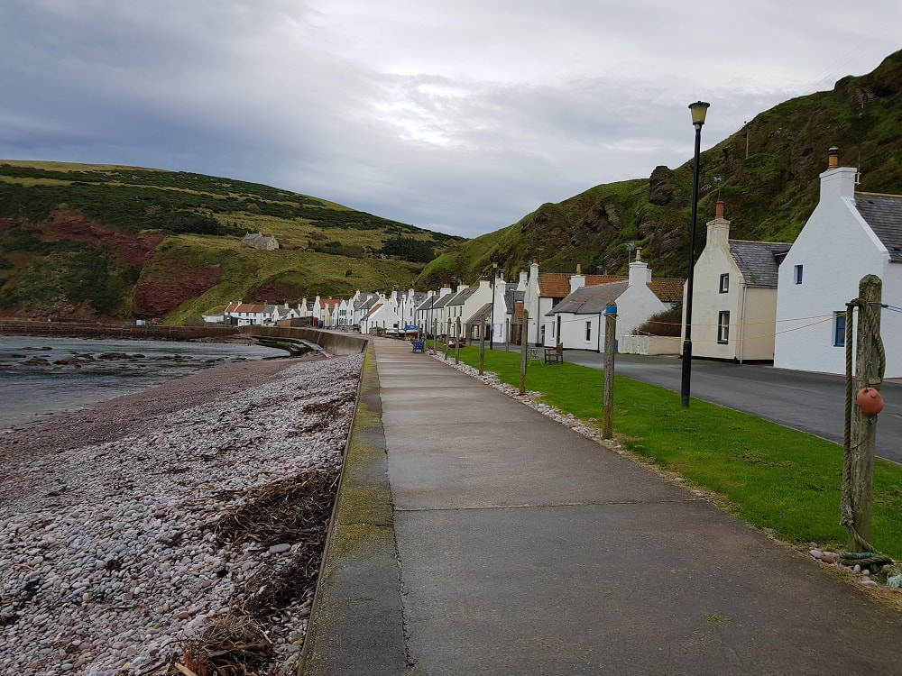 A row of white cottages situated on the seafront with cliffs behind